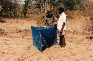 Knowledge and Jo at a tsetse trap