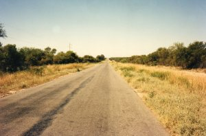 Road in the Grand Chaco