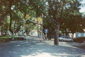 Park in Amarante