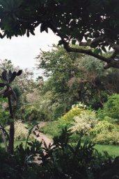 Andromeda Gardens 2