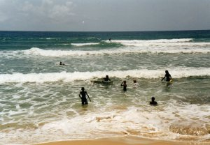 Bathsheba Surfers